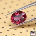 "1.26 carat Oval 7.6x5.6 mm Natural and Untreated Red ""Ampanihy"" Rhodolite Garnet Gemstone"