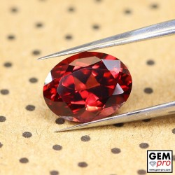 "1.72ct Rhodolite ""Ampanihy"" Garnet Oval Cut 7 x 6 mm Natural Gemstone from Madagascar"