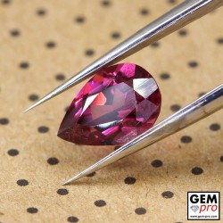 "1.63 carat Pear 8.8x6.2 mm Natural and Untreated Pink ""Ampanihy"" Rhodolite Garnet Gemstone"