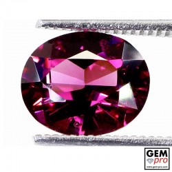"2.69 carat Oval 9.5x7.8 mm Natural and Untreated Pink ""Ampanihy"" Rhodolite Garnet Gemstone"