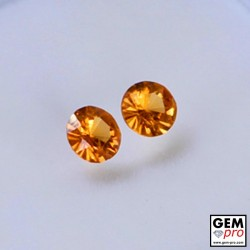 0.49 Carat Orange Spessartite Garnet 2 pcs) Gem from Madagascar Natural and Untreated