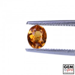 0.51 Carat Orange Spessartite Garnet Gem from Madagascar Natural and Untreated