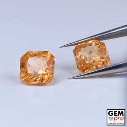 0.91 Carat Orange Spessartite Garnet (2 pcs) Gem from Madagascar Natural and Untreated