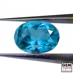 0.55 Carat Blue Grandidierite AAA Gem from Madagascar Natural and Untreated