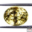 6.1 ct. Yellow Golden Beryl