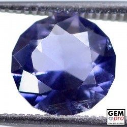 1.64 Carat Violet Blue Iolite Gem from Madagascar Natural and Untreated