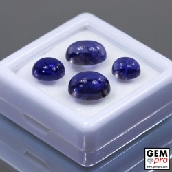 15.48 Carat Violet Blue Iolite 4 pcs Gem from Madagascar Natural and Untreated