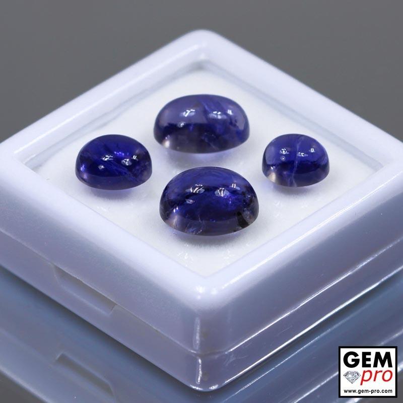 15.48 Carat Iolite Bleue Violet Lot Gemme de Madagascar