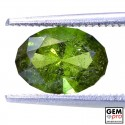 1.63 ct Yellowish Green Kornerupine Gem from Madagascar Natural and Untreated