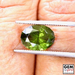 2.75 ct Yellowish Green Kornerupine Gem from Madagascar Natural and Untreated