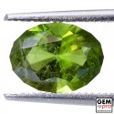 1.9 ct. Kornerupine