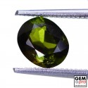 1.27 ct Yellowish Green Kornerupine Gem from Madagascar Natural and Untreated