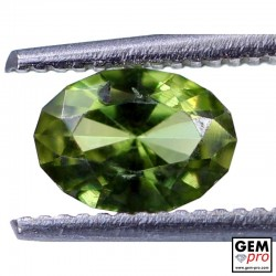 0.60 ct Yellowish Green Kornerupine Gem from Madagascar Natural and Untreated