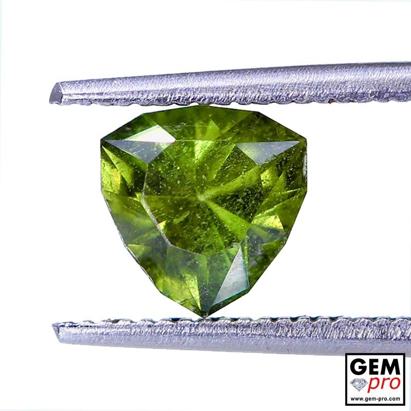 1.13 ct Yellowish Green Kornerupine Gem from Madagascar Natural and Untreated