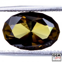 1.79 ct Yellowish Brown Kornerupine Gem from Madagascar Natural and Untreated
