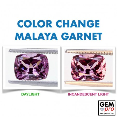 Pink Malaya Color-Change Garnet 2.24 Carat Cushion from Madagascar Natural and Untreated Gemstone