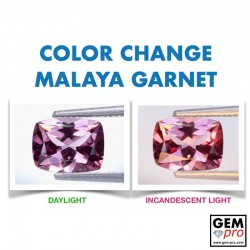 Pink Malaya Color-Change Garnet 1.78 Carat Cushion from Madagascar Natural and Untreated Gemstone