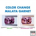 Pink Malaya Color-Change Garnet 1.49 Carat Cushion from Madagascar Natural and Untreated Gemstone