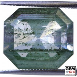 Colorless Quartz with Chlorite inclusions 8.82 Carat Hexagon from Madagascar Gemstone