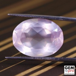 13.94ct Rose Quartz Oval Cut Natural Gemstone from Madagascar