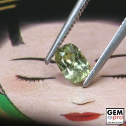 Yellow Sapphire 0.53 ct Cushion from Madagascar Gemstone