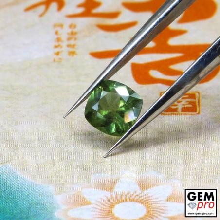 0.43 Carat Saphir Vert Gemme de Madagascar