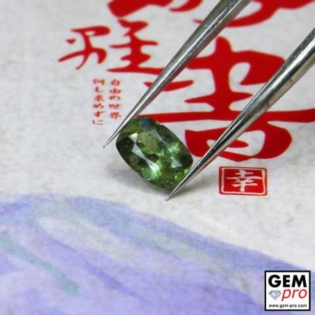 0.58 Carat Saphir Vert Gemme de Madagascar