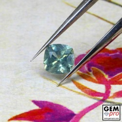 0.43 Carat Saphir Vert Bleuté Gemme de Madagascar