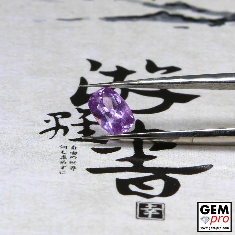 0.58 Carat Saphir Violet Gemme de Madagascar