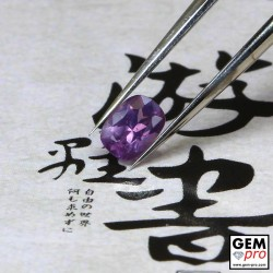 0.43ct Violet Sapphire Cushion Cut 5 x 3 mm Natural Gemstone from Madagascar