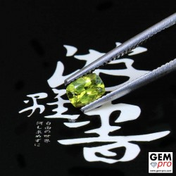 0.43ct Yellow Sapphire Cushion Cut 5 x 3 mm Natural Gemstone from Madagascar