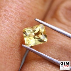 1.30 Carat Golden Scapolite Gems from Madagascar
