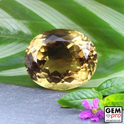 102.80 ct Brown Smoky Quartz Gem from Madagascar