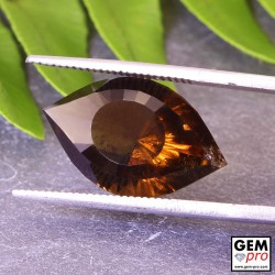 8.19 ct Brown Smoky Quartz Gem Cleopatra Eye Fancy from Madagascar