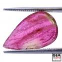 4.9 ct. Tourmaline Bicolore
