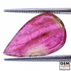 4.93 ct Bi-Color Tourmaline Gem from Madagascar Natural and Untreated