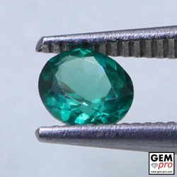 Green Apatite 0.56 Carat Oval Cut Madagascar Gemstone