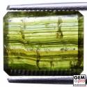 3.1 ct. Tourmaline Bicolore