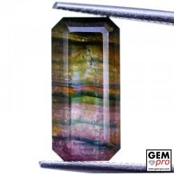 4.90 Carat Tourmaline Multicolore Gemme de Madagascar