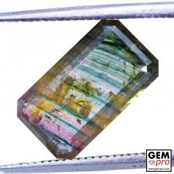 2.78 Carat Tourmaline Multicolore Gemme de Madagascar