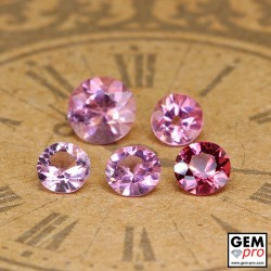2.38 ct Rose Pink Tourmaline Gem 5 pcs from Madagascar Natural and Untreated