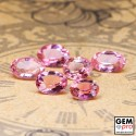 3.39  ct Rose Pink Tourmaline Gem 6 pcs from Madagascar Natural and Untreated