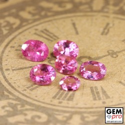 3.04 ct Rose Pink Tourmaline Gem 6 pcs from Madagascar Natural and Untreated