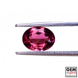 1.64 ct Rose Pink Tourmaline Gem from Madagascar Natural and Untreated
