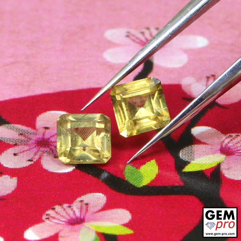 Yellow Sapphire 1.11 ct Octagon (2 pcs) from Madagascar Gemstone
