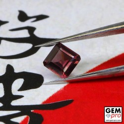 0.51 carat Pink Sapphire Gem from Madagascar