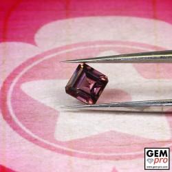 0.65 Carat Saphir Rose Gemme de Madagascar