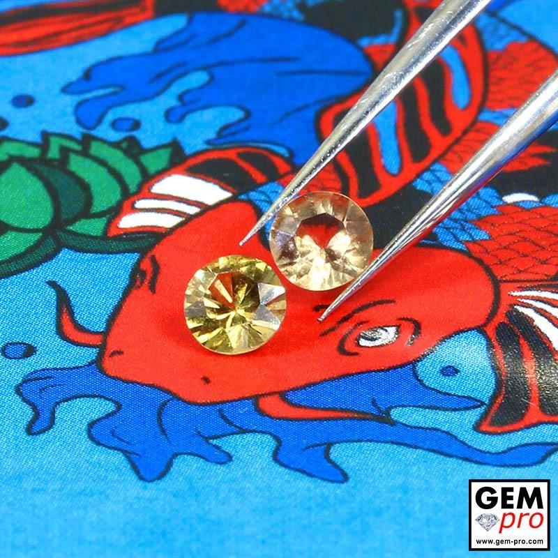 Yellow Sapphire 0.47 ct Round (2 pcs) from Madagascar Gemstone