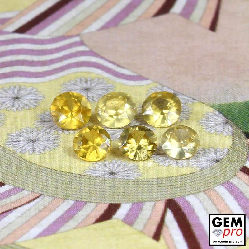 Yellow Sapphire 1.54 ct Round (6 pcs) from Madagascar Gemstone