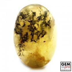 Orange Dendritic Moss Opal 14.23 ct Oval Cabochon from Madagascar Gemstone